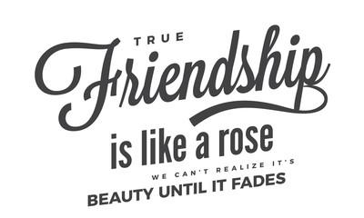 True friendship is like a rose. We can't realize it's beauty until it fades.