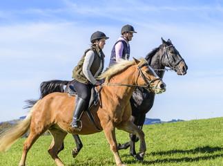 flott unterwegs mit dem Pferd