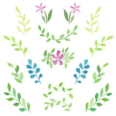 Set of watercolor young green branches/sprigs with leaves and flowers.