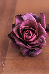 Withered roses on a wooden table. Flowers