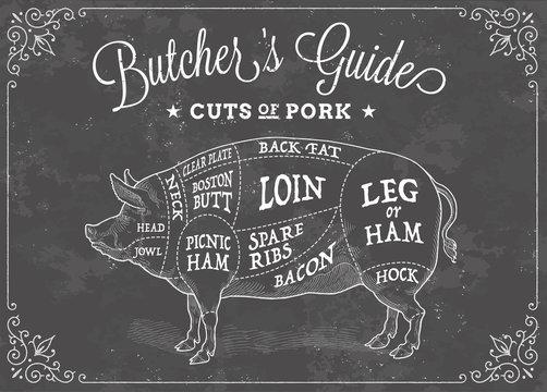 Vector Cuts of Pork Chalk Illustration