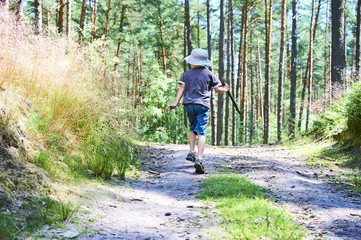 Small child boy walking or hiking on a path through the forest in summer with sun hat on head