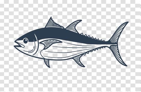 silhouette of tuna