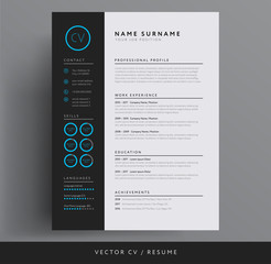 Stylish CV / resume template - blue and dark gray backgound