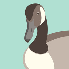 goose  head  vector illustration flat style  front