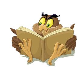 czytająca sowa