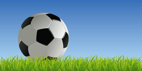 football - foot - ballon de foot - ballon - terrain -fond - pelouse - symbole - présentation - arrière plan