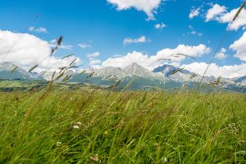 Wall Mural - High Tatras in Slovakia
