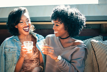 Two young women toasting with drinks