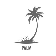 Palm trees silhouette on island.