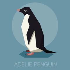 Flat Adelie penguin