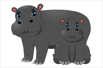 Mother hippo and baby hippo