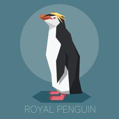 Flat Royal penguin