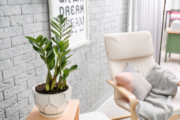Tropical plant with green leaves and comfortable armchair in room interior