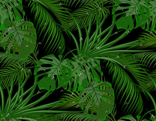 Jungle. Green leaves of tropical palm trees, monstera, agave. Drops of dew, rain. Seamless. Isolated on black background. illustration
