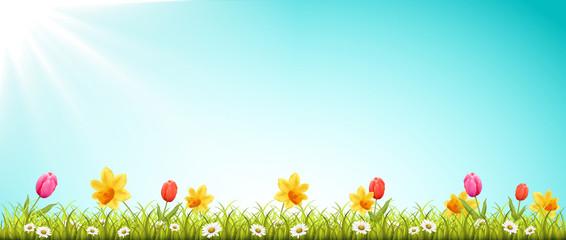 Frühling Wiese mit Blumen und Sonne