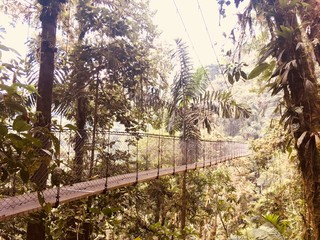 Mystic hanging bridge of Costa Rica