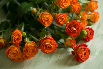 Orange or red and yellow little roses on green background