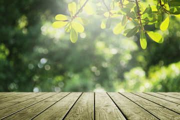 Wooden empty and blur green forest background.