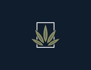 luxury cannabis logo design template.