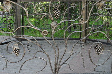 beautiful forged fence with branches, bunches and leaves of grapes