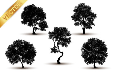 Collection tree silhouette isolated on white background.