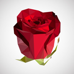 Vector polygonal illustration. Rose in modern origami style.