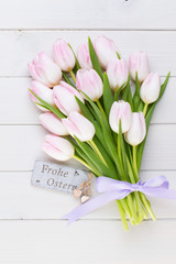 Pink tulip on the white background. Easter background.