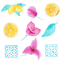 Watercolor hand painted collection of lemon, bouganvillea flower, leave and square mosaic. Can be used for printing and decoration.
