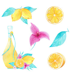Watercolor set of lemon, olive oil, leaf and bouganvillea flower on white background. Can be used for printing, decoration, invitation.