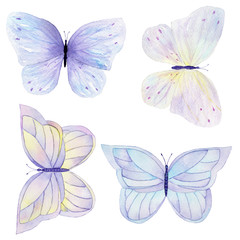 Watercolor butterfly set hand drawn painting. Can be used for cards,wedding invitations,logo,printing on fabric.