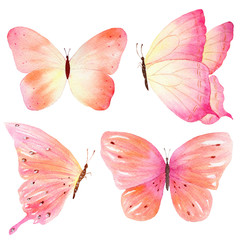 Hand sketch of colored butterfly. Watercolor hand painted collection. Ideal for invitations, cards, wallpapers, printing on fabric.