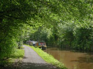 Three narrow boats docked alongside a canal with a footpath and leafy trees alongside