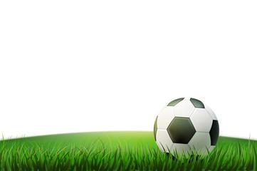 Vector realistic footbal soccer ball stadium grass