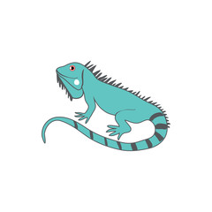 Cartoon cute iguana, wild exotic animal vector colorful illustration, little reptile isolated on white background, decorative gesko, Education for children ABC zoo alphabet, character design, mascot