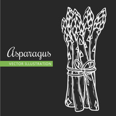 asparagus isolated