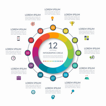 Infographic circle. 12 options, steps, parts. Business concept for diagram, graph, chart. Vector template