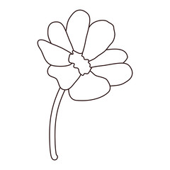 line beauty flowers with petals design and leaves