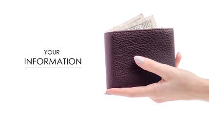 Money dollar purse in hand pattern