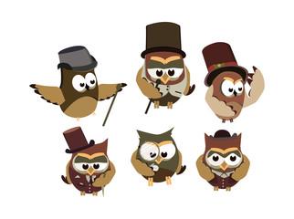 Funny owls gentlemen, set on isolated background