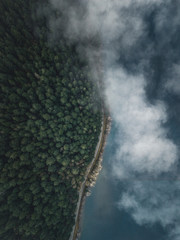 Aerial Photograph of green forest near a lake with leading road and fog from abive in oregon, USA