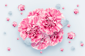 Spring background, pink, red and white carnations on a light background. Floral background. flat lay, top view, Mixed media. Valentine's Day, March 8