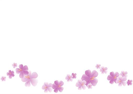 Flying light purple flowers isolated on white background. Apple-tree flowers. Cherry blossom. Border. Vector