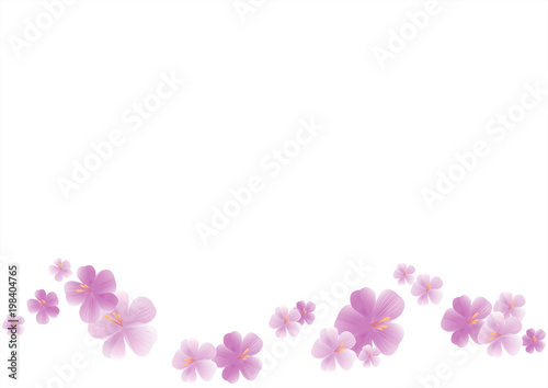 Flying light purple flowers isolated on white background apple tree flying light purple flowers isolated on white background apple tree flowers cherry blossom mightylinksfo