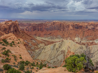 View of one of the canyons in Canyonlands National Park under a stormy sky