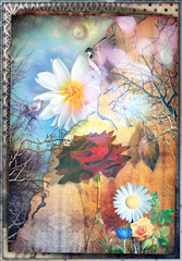 Canvas Prints Imagination Fairytales and enchanted countryside with red rose - The secret kingdom.