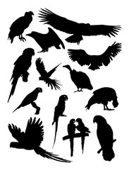 Condor and parrot birds animal detail silhouette.Vector, illustration. Good use for symbol, logo, web icon, mascot, sign, or any design you want.
