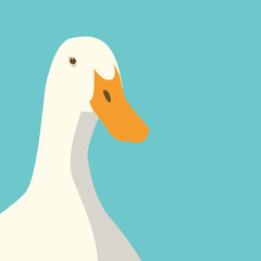 duck head face vector illustration flat style front