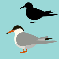 gull  vector illustration flat style  profile black silhouette