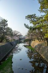 夙川公園/兵庫県